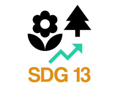 SDG 13: Duurzame Marketing